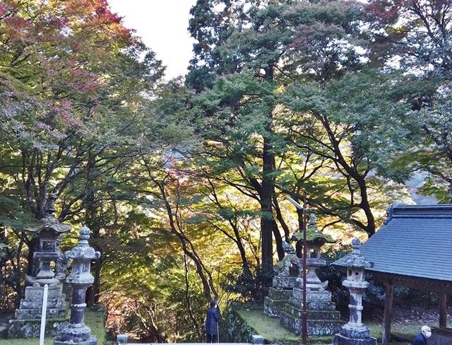 鰐淵寺-紅葉-本堂2020_640x488